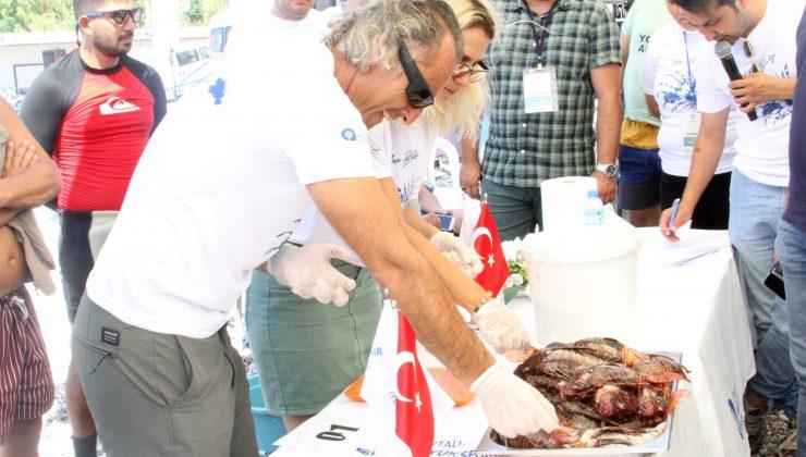 Zehirli aslan balığını yakalayıp ızgarada pişirip yediler