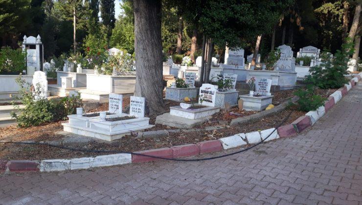 Çocuk mezarlarına balon bırakırken görüntülendi, sırrı ortaya çıktı