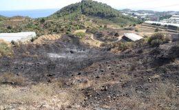 Alanya'daki orman yangını kontrol altında